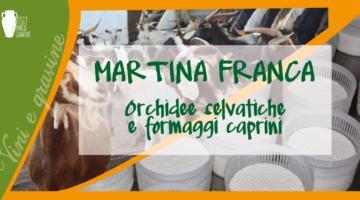 Martina Franca: orchidee selvatiche e formaggi caprini